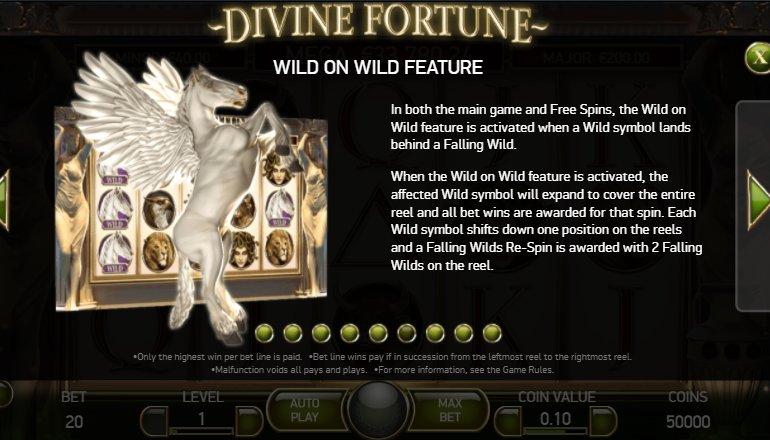 wild feature divine fortune