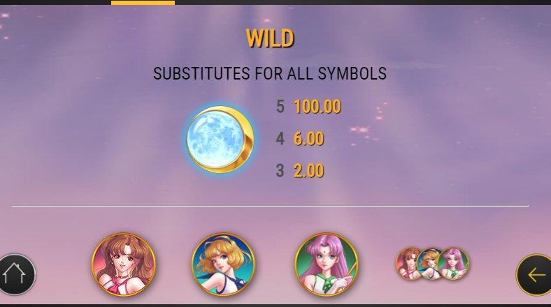 wild symbol moon princess